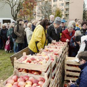 Almát osztott Egerben a Fidesz frakció