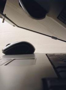 2011 már a növekedésé lehet az IKT szektorban -  A Digitális Megújulás a növekedés egyik motorja lehet