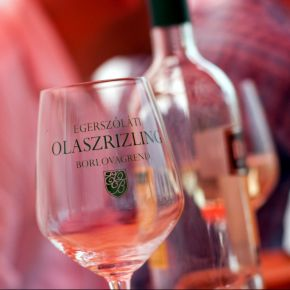 Kiváló borok a XIX. Egerszóláti Olaszrizling Fesztiválon